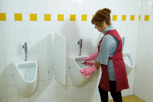 Schoonmaak toilet in Papendrecht